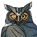 owl_copyrighted nature illustration_JMTurley